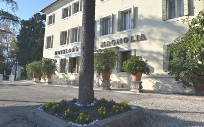 hotel-magnolia